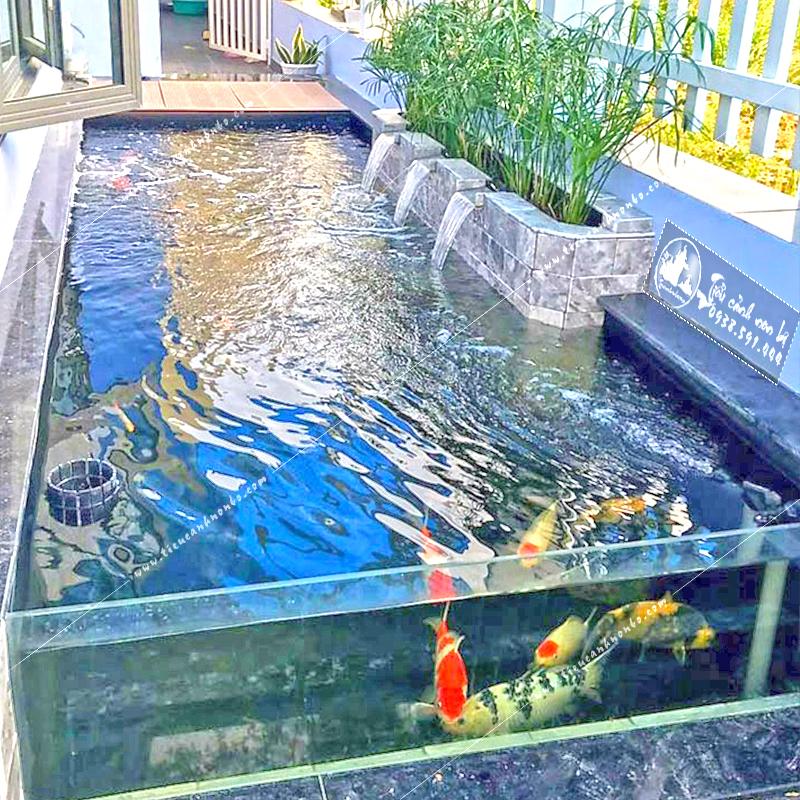 ho-ca-koi-bang-kinh-ben-hong-nha Hồ Cá Koi Bằng Kính Bên Hông Nhà