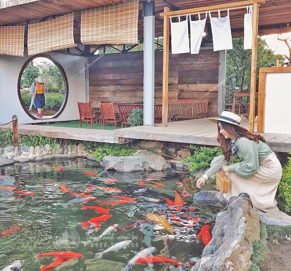 9-mau-be-ca-koi-hien-dai-dep-nhat Tiểu Cảnh Hồ Cá Koi Trang Trí Sân Vườn Tại Gia