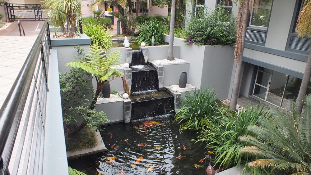 vi-sao-ho-ca-koi-trong-nha-ngay-cang-duoc-nhieu-gia-dinh-viet-yeu-thich Vì sao hồ cá Koi trong nhà ngày càng được nhiều gia đình Việt yêu thích